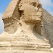 Sphinx head - Foto Stock