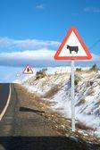 три дорожных знаков — Стоковое фото