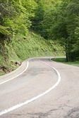 Curve at Picos de Europa mountains — Stock Photo