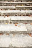 Leaves on old stairs — Stock Photo