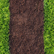 Stock Photo: Healthy grass and soil pattern