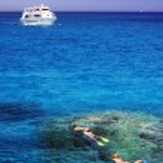 Red Sea snorkeling — Stock Photo