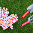 Garden tools — Stock Photo #5854176