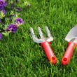 Garden tools — Stock Photo #5854179