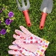 Garden tools — Stock Photo #5854180