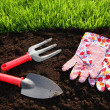 Garden tools — Stock Photo #5854186