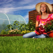 Stock Photo: Summer gardening