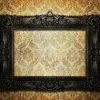 Beautiful ornate frame — Stock Photo #5854288