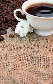 Cup of coffee and white flowers — Stock Photo