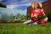 Jardinería de verano — Foto de Stock
