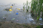 Polluted lake — Stock Photo