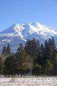 Mt.Shasta, northern California. — Stock Photo