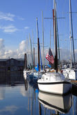 A row of sailboats. — Stock Photo