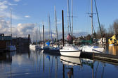 Moored sailboats, Portland Oregon. — Foto de Stock