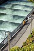 Fish ladders Bonneville Dam, Oregon. — Stock Photo