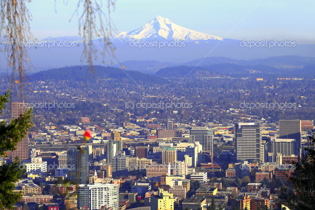 Mt. Hood and the city of Portland in the foreground. — Stock Photo #5941330