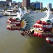Dragon boats, downtown marina, Portland Oregon. - Foto Stock