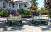 Dva malé kombi vozíky v zahradě. — Stock fotografie
