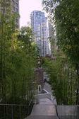 Jardin de bambou & étapes de vancouver c.-b. — Photo
