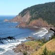 Ecola state parl, Oregon coast. - Stock Photo