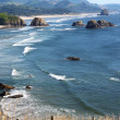 Stock Photo: Oregon coast at Ecolstate park.