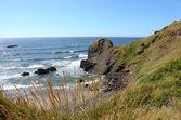 Oregon pobřeží na ekologické státní park. — Stock fotografie
