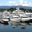 Luxury yachts in Vancouver BC marina. Canada. - Stock Photo