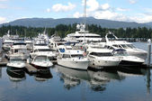Luxe jachten in vancouver bc marina. Canada. — Stockfoto