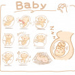 Baby inside womb set — Stock Vector