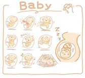Baby inside womb set — Stockvector