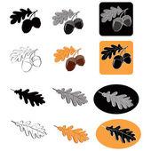 Acorns and oak leaves — Stock Vector