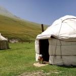 Kyrgyz yurta — Stock Photo