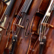 Violins - Stock Photo