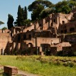Ruins of ancient Rome - Stockfoto