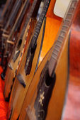 Close-up of mandolins — Stock Photo
