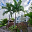 Stock Photo: Garden with palms and Bali hut in front of waterfront mansion