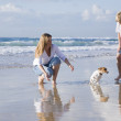 Family playing with dog on the beach — Stock Photo