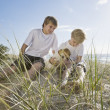 Stock Photo: Brothers playing with dog at the beach