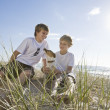 Brothers playing with dog at the beach — Stock Photo