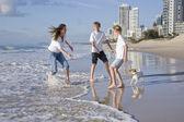 Familie, spielen mit hund am strand — Stockfoto