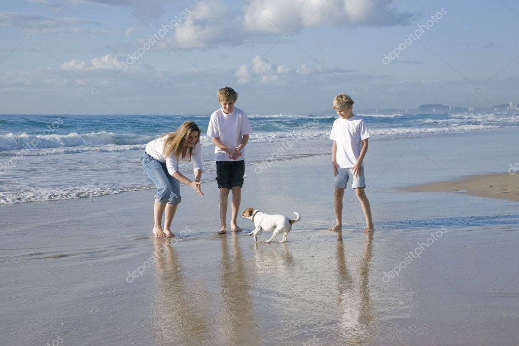 Family playing with dog on the beach — Stock Photo #5788421