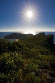 Mountain Lord Howe Island — Stock Photo