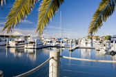 Boats on the marina — Stock Photo