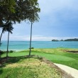 Golf Course by the Sea — Stock Photo #5833563