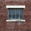 Industrial Color Brick Wall with Blue Window — Stok fotoğraf