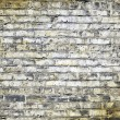 Old Picture Effect - Traditional Aged White Brick Wall — Stock Photo