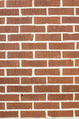 Meio urbano - brickwall — Fotografia Stock