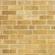 Urban Background - BrickWall — 图库照片