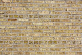 Fond et texture brickwall brun — Photo