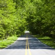 Country road — Stock Photo #6056065